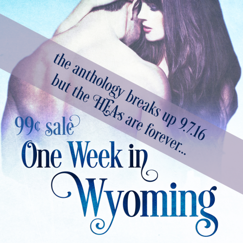 Wyoming-Antho-Sale-insta-001.png